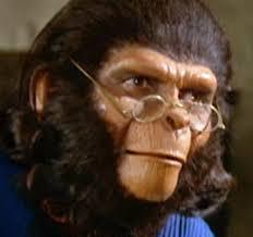 inquisitive_ape